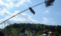 Traditionsveranstaltung Maibaumaufstellen
