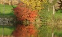 Vulkanland im Herbst